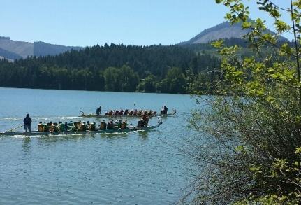 2014 Dragon Boat Races on Dexter Lake